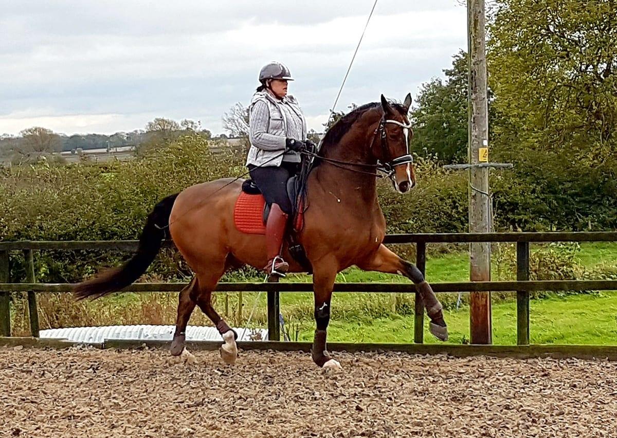 Jayne Lancashire Riding
