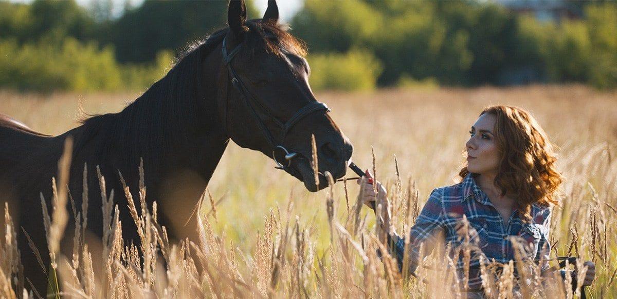 horse-owner